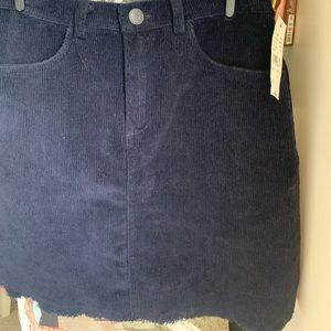 Pacsun blue corduroy skirt